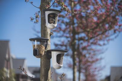 Practical feeders because of design, keeping food dry for our high flying friends.