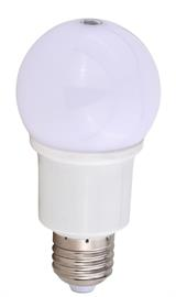 This color changing bulb allows you to turn any downlight into a color changing light.  The Instalux® technnology allows you to turn the light on and off with simple hand gestures.  Additionally it allows you to change the color temperature between 3000K soft white and 5000K cool white. this bulb is ideal for use in Downlight wall lights, Mini Pendants or Table lamps.